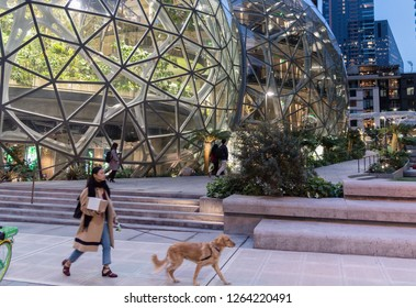 Seattle, Washington circa December 2018 the Amazon company world headquarters spheres terrariums, woman walking with dog.