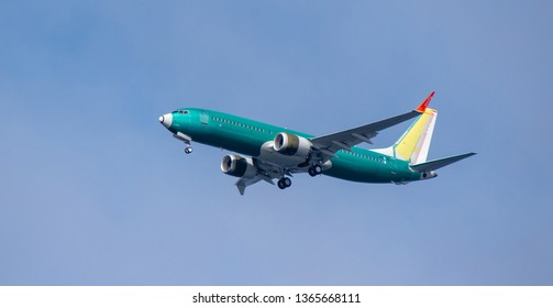 Seattle, Washington, USA – April 6, 2019  A Boeing 737 MAX 8 aircraft begins to drop its landing gear in preparation of landing at Boeing Field