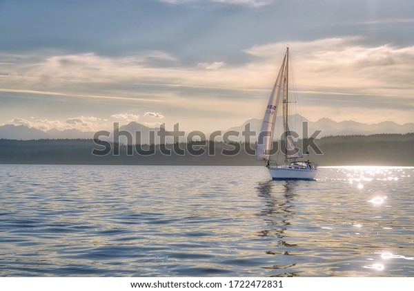 Seattle, Washington / USA - July 22, 2018: A sailboat sails in the late afternoon as sunlight glints on Puget Sound and the Olympic Mountains rise in the background near Seattle.