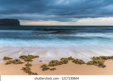 Seaweed by the Stormy Seashore -MacMasters Beach on the Central Coast, NSW, Australia.