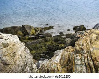 Seaweed Covered Coastline