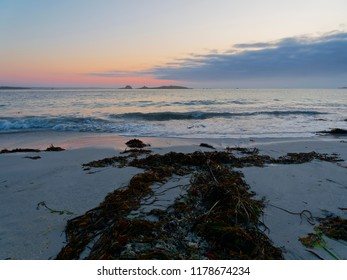 Seaweed points to the incoming waves at sunset on Plage Sainte-Marguerite