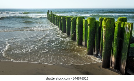 Seaweed-covered pylons jutting out into the Atlantic Ocean along the beach at Long Beach Island, New Jersey