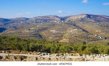 Sebastia Roman Ruins in Palestine - Potential Future UNESCO Site