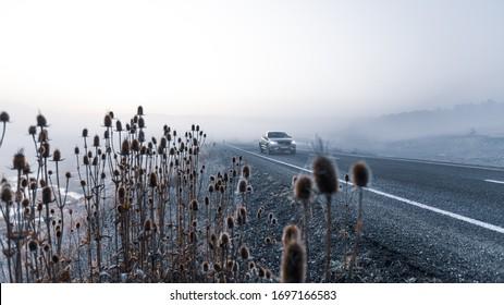Seben Plateau, Bolu, Turkey; Volvo XC60 jeep is on the mountain roads of Seben Plateau, Bolu in a foggy and sunny sunrise at winter time