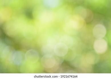 sebuah gambar blur yang dengan sengaja di ambil oleh photographer nya