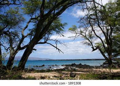 Secluded beach, Maui, Hawaii