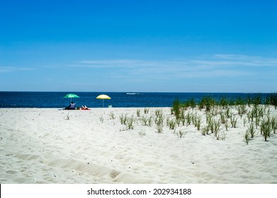 A secluded beach on Long Beach Island along the New Jersey coastline.
