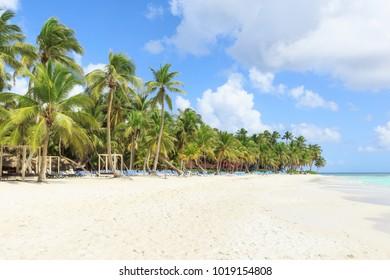 Secluded beach on Saona Island, La Romana, Dominican Republic