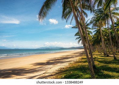 Secluded Long Beach at San Vincente with palm trees, Palawan, Philippines