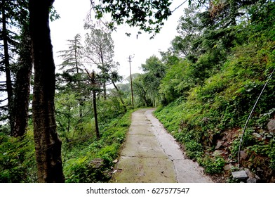 A secluded mountain pathway leading into a valley at Kasauli, a mountain resoty town in Northern India