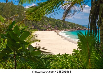 Secluded Tropical Beach on La Digue