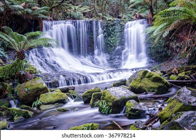 Secluded waterfall in tropical rainforest. Horseshoe Falls in Mount Field National Park, Tasmania, Australia