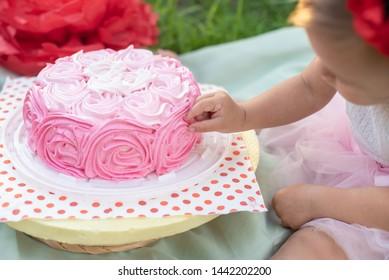 Strange 2 Year Old Birthday Cake Stock Photos Images Photography Personalised Birthday Cards Arneslily Jamesorg