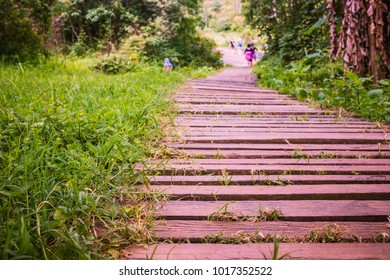 The second wooden bridge along the way is filled with green grass. Beautiful nature.