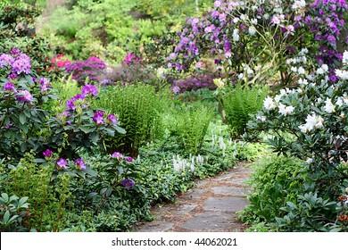 secret garden with blooming flowers