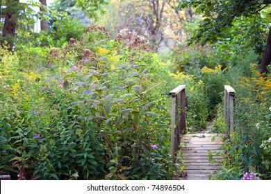 Secret Garden at Dusk