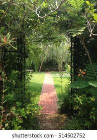 Secret garden, soft focus
