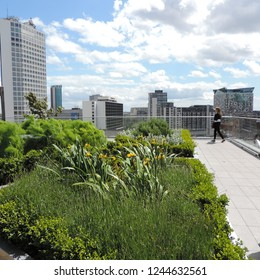 The secret roof garden of the Birmingham Library
