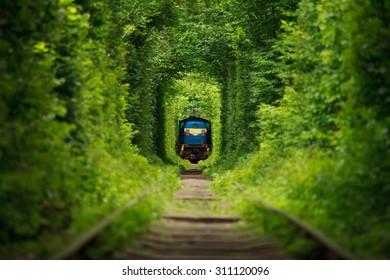 secret train 'tunnel of love'