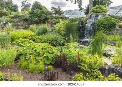 Section of the rock garden with waterfall in Kew botanical garden. Richmond, London, UK