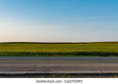 Section of Route 6 with farmland in background.  Illinois, USA