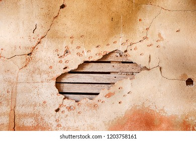 A section of wall with cracked plaster in an old schoolhouse in the ghost town of Govan, Washington results in a natural textured background.