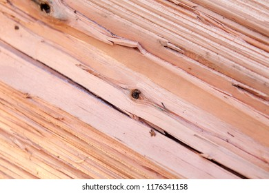 section of wood in closeup wallpaper