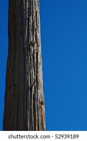 section of wood telephone or utility pole against bright blue sky