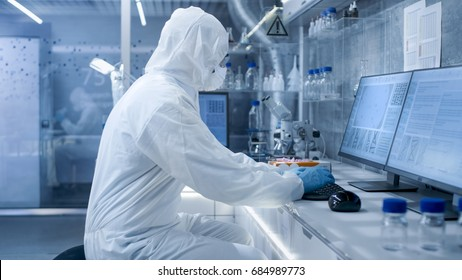 In a Secure High Level Laboratory Scientists in a Coverall Conducting a Research. Biologist Analyzes Results on a Computer.