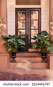 A secured entrance into a house in a posh urban area. The front door is brown and potted plants on on the steps. The exterior is made of brick.