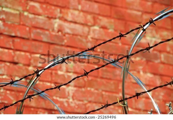 security-fence-razor-barb-wire-600w-2526