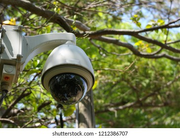 Security sphere camera watching the safty for everyone in natural green public park.