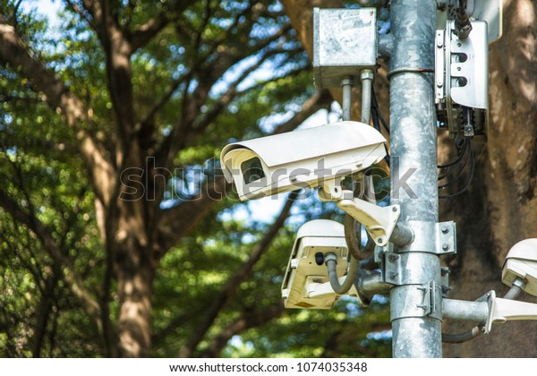 Security video camera in park (CCTV)