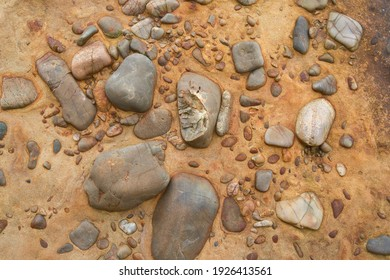 Sedimentary rock with cherts and sand. Clastic sedimentary rock. Geology