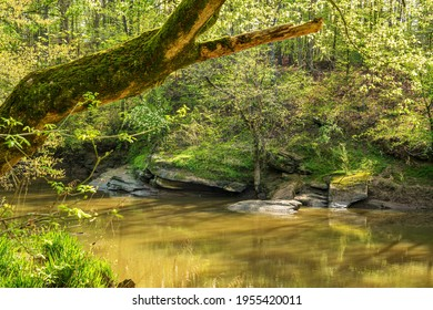 Sedimentary Rock Formation on the Banks of a Placid Muddy river,