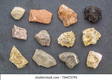 sedimentary rock geology collection, from top left: siltstone, sandstone rock salt, coal, limestone, arkose, conglomerate, fossiliferous limestone, mudstone, shale, travertine, rock gypsum
