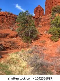 Sedona Landscape in Arizona, USA