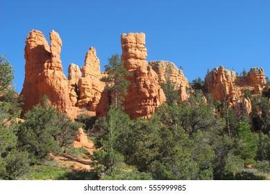 Sedona orange rocks
