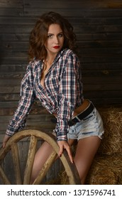 Seductive young woman in jeans shorts and a plaid shirt alluring on a hay