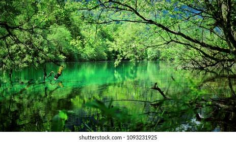 See, Wald, Ruhe