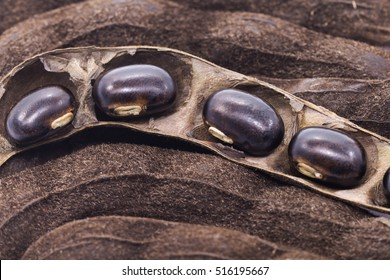 seed of nettles brown pods (Mucuna pruriens)