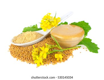 Seed. Powder. Flowers. Leaves and ready mustard. Isolated on white background