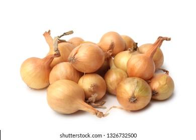 Seeding onion on white background
