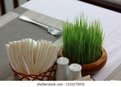 seedling rice in round pot for decorate on breakfast table