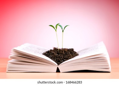 Seedlings growing from book in knowledge concept