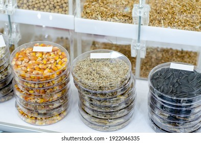 Seeds of agricultural plants in test tubes
