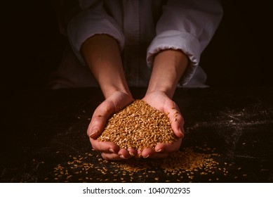 seeds of golden flax in women's palms