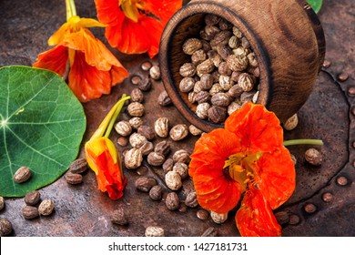 Seeds, leaves and flowers of nasturtium.Spice.Herbal medicine.Healing flowers