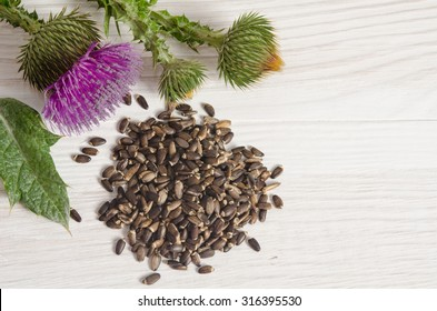 Seeds of a milk thistle with flowers (Silybum marianum, Scotch Thistle, Marian thistle ) on wooden table